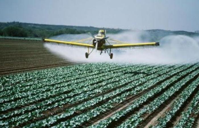 فلسطين | غزة: مليون وربع دولار خسائر المزارعين جراء مبيدات الاحتلال السامة