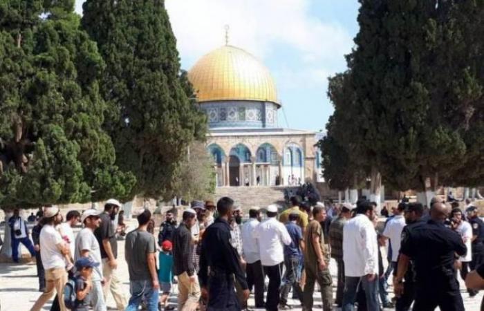 """فلسطين   اتحاد منظمات الهيكل المتطرفة يدعو إلى اقتحام """"الأقصى"""" الإثنين في """"يوم الشجرة العبري"""""""