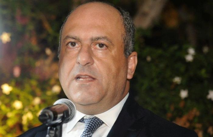 """بو عاصي: لا ثقة للحكومة و""""القوات"""" ستعارض بالحق"""