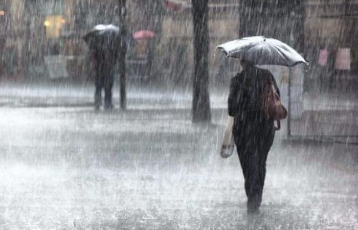 فلسطين | زراعة غزة: نسبة الأمطار بلغت 94 بالمائة