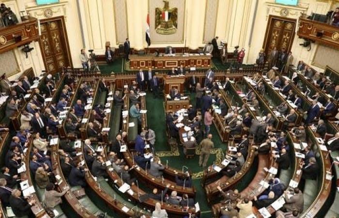 """مصر   برلمان مصر يعدل تعريف """"الكيانات الإرهابية"""""""