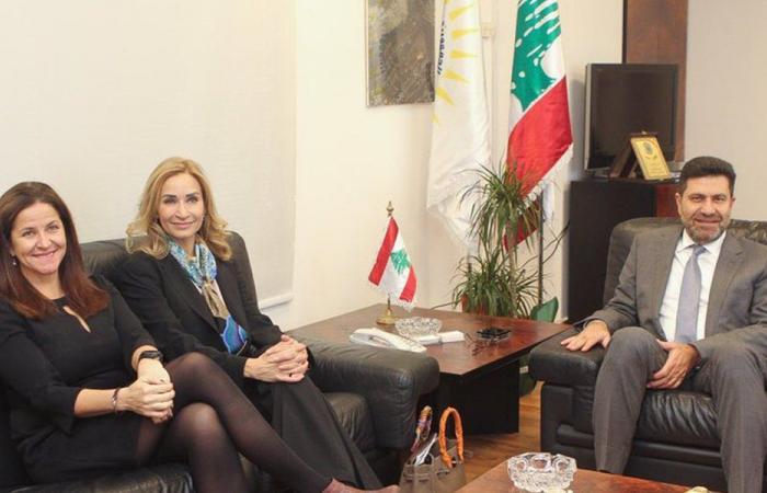 خطة الكهرباء بين غجر وسفيرتي النروج وسويسرا