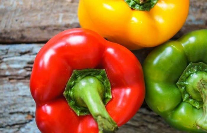 الفليفلة الخضراء أو الصفراء أو الحمراء.. أيها أفضل لصحتكم؟