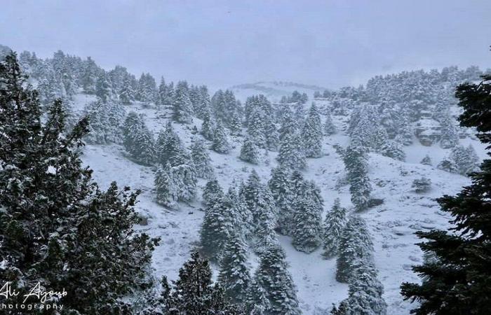 الثلوج تقطع هذه الطرقات!