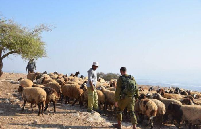 فلسطين   نشطاء اسرائيليون يعملون لابقاء غور الأردن بيد الفلسطينيين