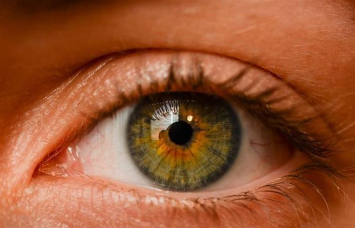 بينها الطعام.. 3 أشياء يمكن أن تغيّر لون عينيك!