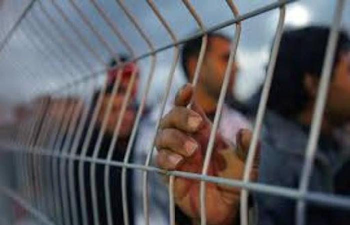 فلسطين | منظمات حقوقية تطالب بحماية عاجلة للأسرى.. والسعدي يدعو أردان لاتخاذ إجراءات فورية