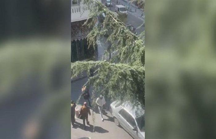 لبنانيون أمام القنصلية في اسطنبول يطالبون بالمساعدة (فيديو)