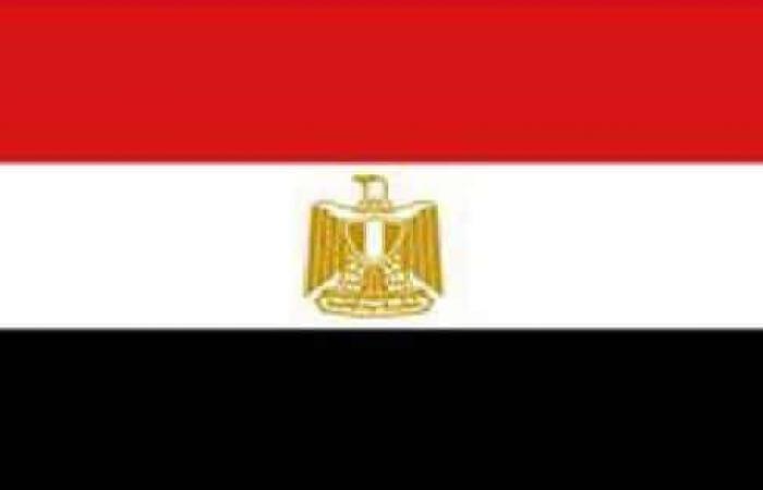 """ما خيارات مصر لتأمين القمح.. كم سعره بـ""""موسم كورونا""""؟"""