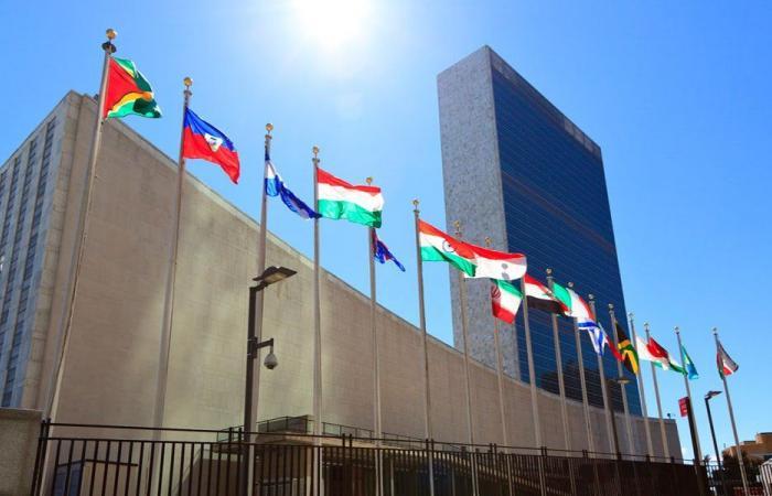 مدللي لـ «الراي»: بذلنا كل جهدنا للحفاظ على دعم دولي للبنان