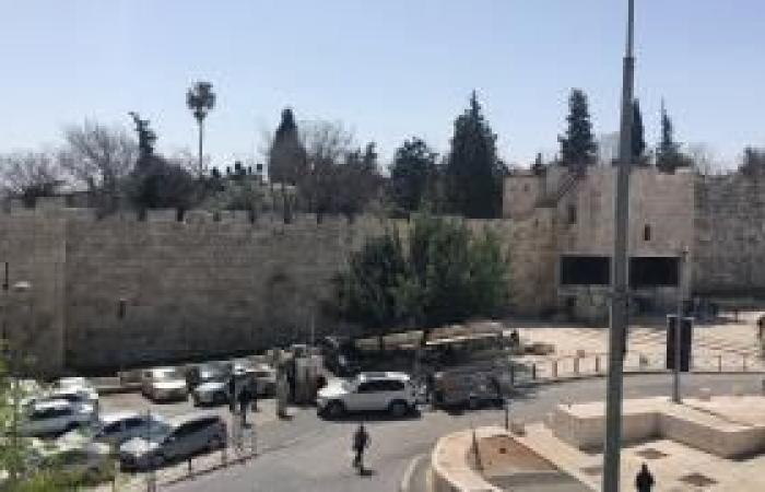 فلسطين   القدس: بلدية الاحتلال تصادق على مخطط هيكلي للمصرارة وباب الساهرة