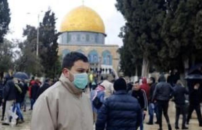 فلسطين   وزيرة الصحة: 6 إصابات جديدة بفيروس كورونا بالقدس و5 حالات شفاء