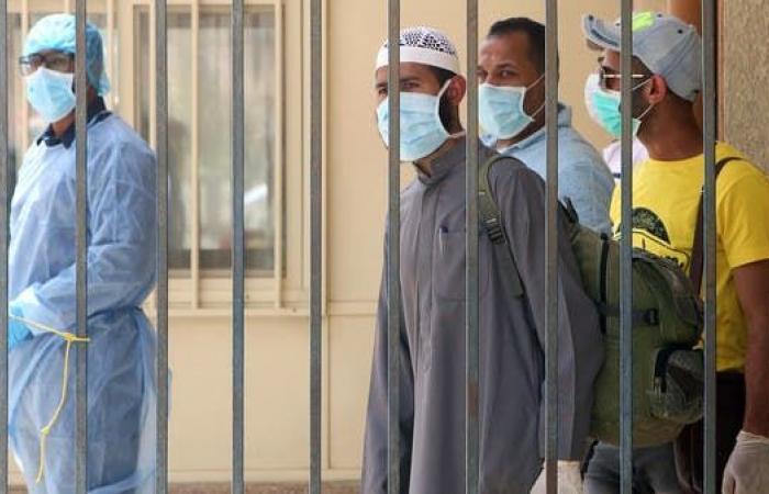 مصر   مصر: 789 إصابة جديدة بكورونا و14 وفاة