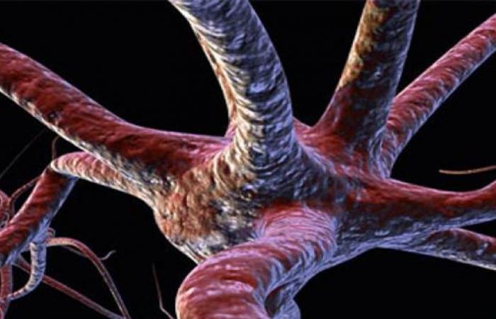 تقنية تتيح إصلاح الخلايا العصبية التالفة في الجسم
