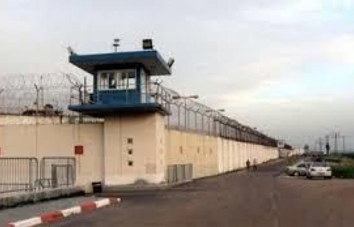 فلسطين | الاحتلال يفرج عن الأسير محمود عمر من مخيم الشاطئ بعد اعتقال دام عامين