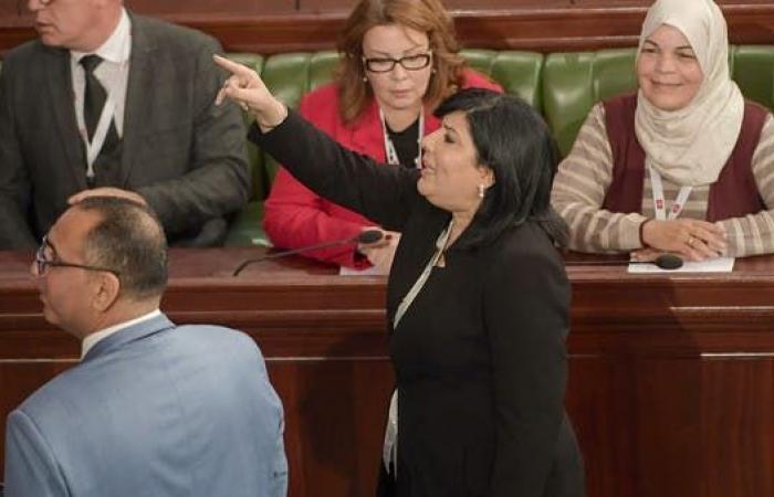 موسي: منظمات أجنبية تتدخل في عمل برلمان تونس