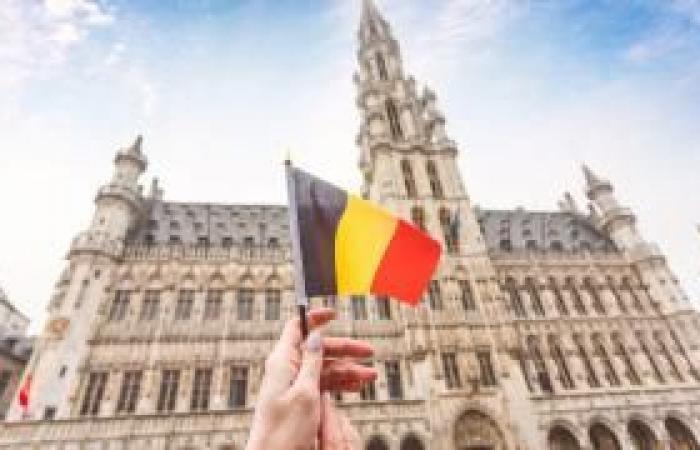 """فلسطين   السفير البلجيكي في إسرائيل: """"الضم"""" لن يمر دون عواقب"""