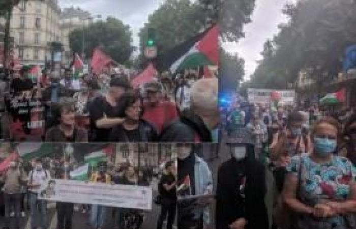 فلسطين | (صُور خاصة) مسيرات حاشدة في فرنسا نصرةً لفلسطين ورفضاً لخطة الضم