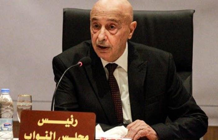 عقيلة صالح: نحتاج دعم قوات مصر في حربنا ضد الإرهاب والمرتزقة