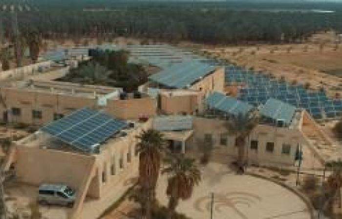 فلسطين | كهرباء القدس تبحث تعزيز التعاون مع برنامج الأمم المتحدة الإنمائي
