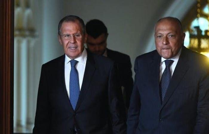 مصر | روسيا: عرضنا تقديم مساعدات فنية بخصوص سد النهضة