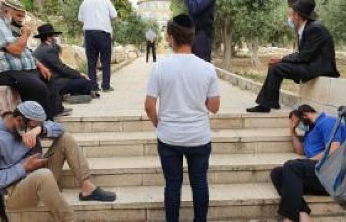 فلسطين   حاخامات يتعمدون إلقاء دروس خلال اقتحامات الأقصى، والدعوة للرباط فيه يوم عرفة وخلال العيد