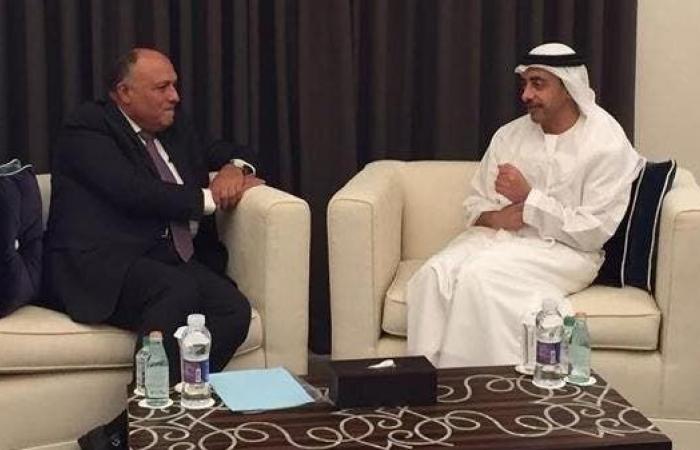 مصر   الإمارات: ندعم جهود مصر بالتوصل لحل سياسي لأزمة ليبيا