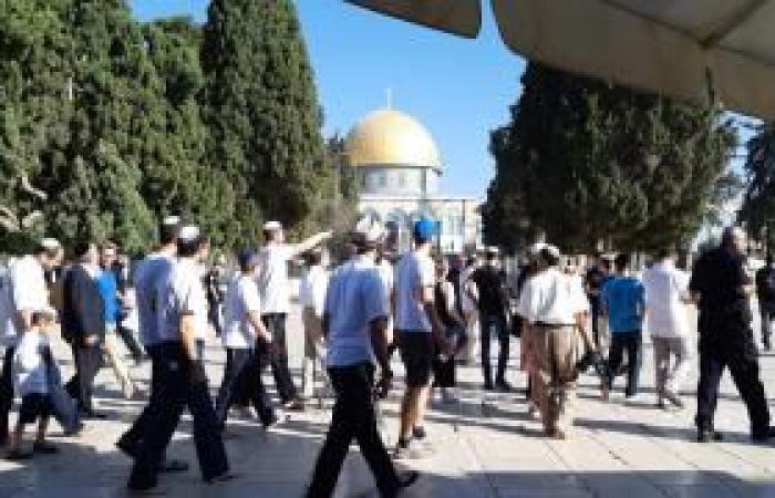 فلسطين | (تقرير إخباري) مئات المستوطنين اقتحموا الأقصى والأوقاف تدق ناقوس الخطر والأردن يحتج