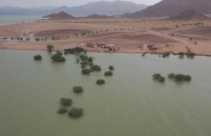 اليمن | الأمم المتحدة: تضرر 35 ألف أسرة جراء السيول في اليمن