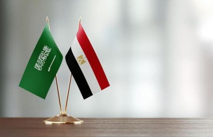 مصر   مصر: ندعم السعودية في أي إجراءات لحماية أمنها