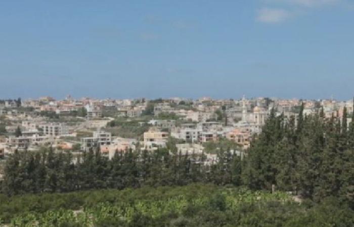بلدية أنصارية: بلدتنا آمنة وخالية من كورونا