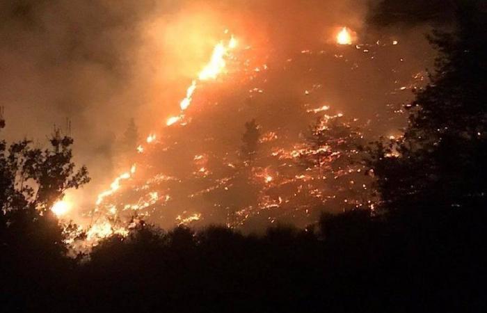 حريق كبير في داريا – الضنية