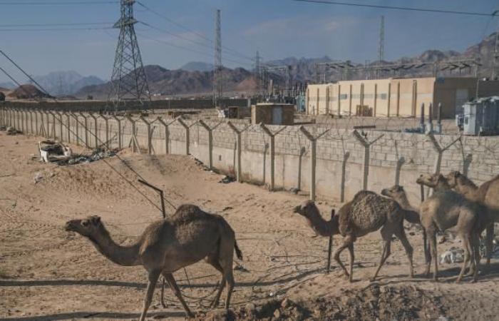 الأردن والعراق يوقعان عقداً للربط الكهربائي