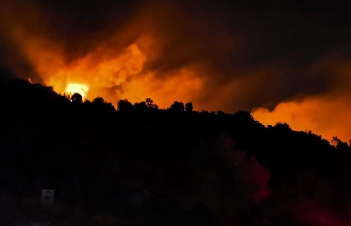 الحرائق تتواصل في البترون.. ومطالبات بتحقيق عاجل!