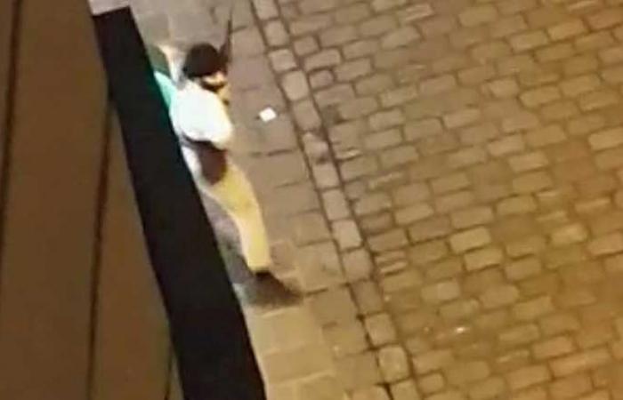 بالفيديو: لحظة إطلاق النار على كنيس يهودي في فيينا