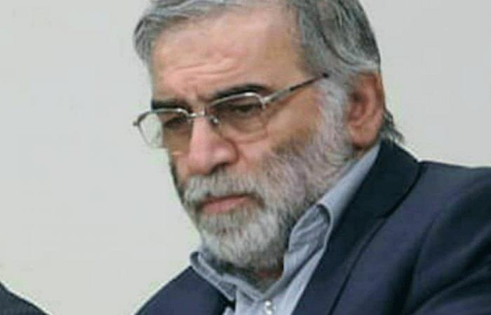 """""""أمل"""" دانت اغتيال زاده: استشهاده سيزيد إيران صلابة"""