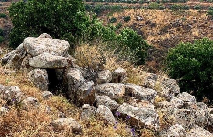 في عكار… جرف أهم القبور الميغاليتية لاستصلاح الأرض!