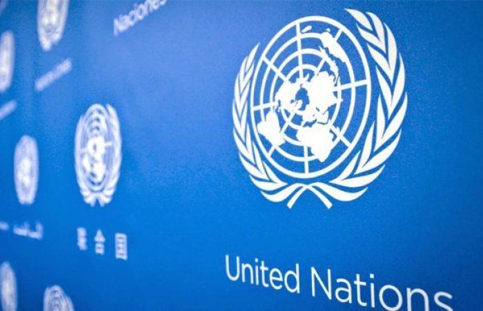 تعيين يوانا فرونيسكا مبعوثة جديدة للأمم المتحدة في لبنان