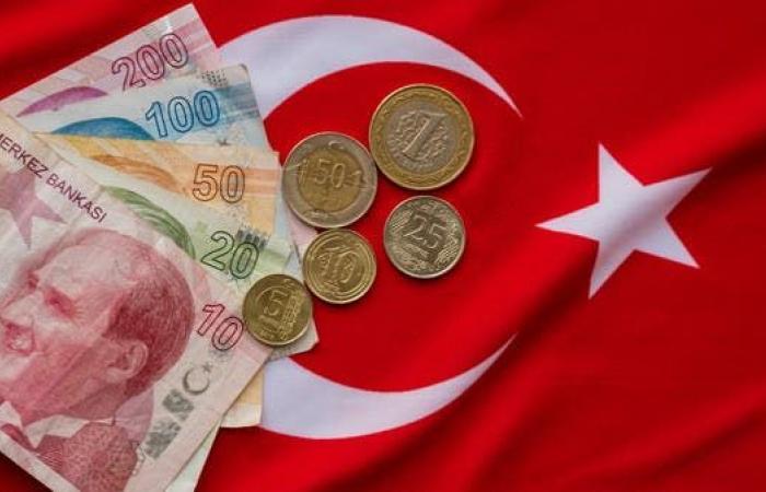 خبير اقتصادي تركي للعربية.نت: خيارات أردوغان لإنقاذ الليرة محدودة وغير مجدية