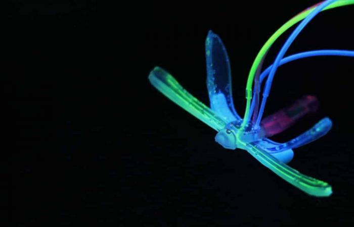 اليعسوب الآلي يكتشف الظروف البيئية في الماء