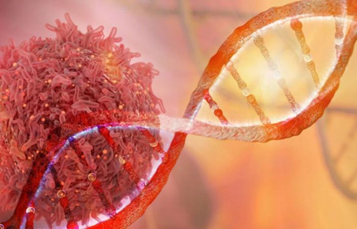 مادة غذائية تمنع نشوء الخلايا السرطانية