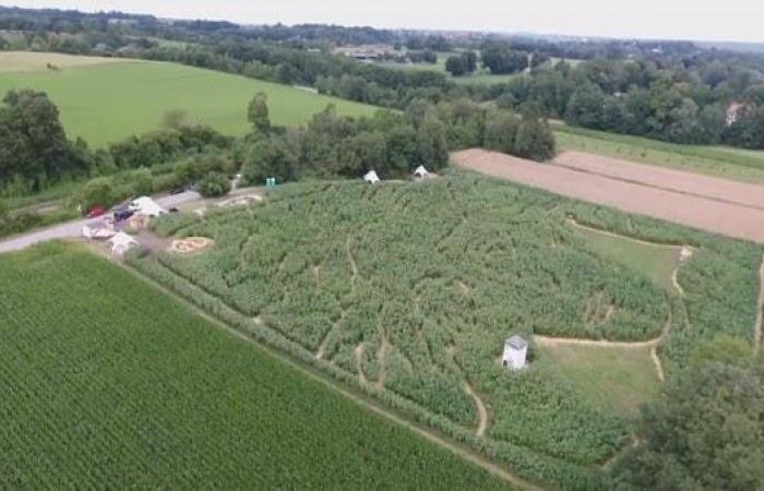 فرنسا تخصص مليار يورو لتعويض مزارعين متضررين من الصقيع