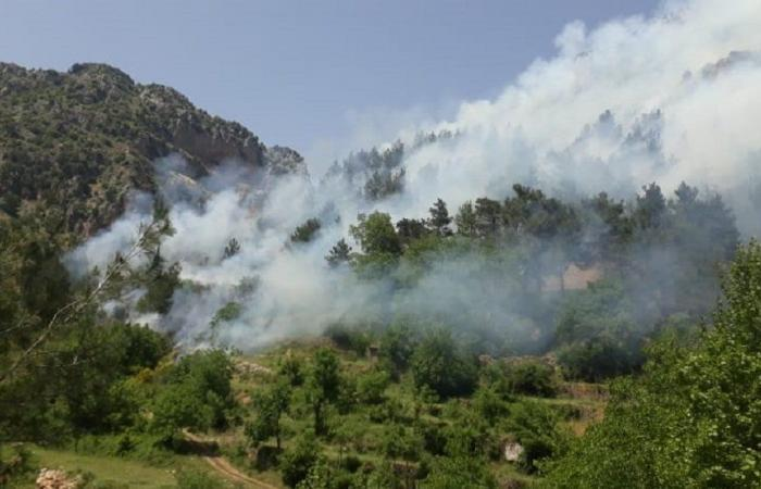 إخماد حريق في أحراج جبل مطل على جزين