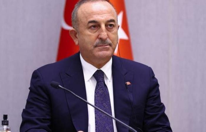 أنقرة: تبادل السفراء مع مصر بات قريبا