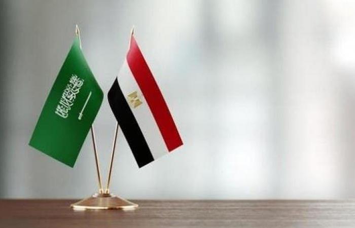 التبادل التجاري بين مصر والسعودية تجاوز 5.5 مليار دولار في 2020