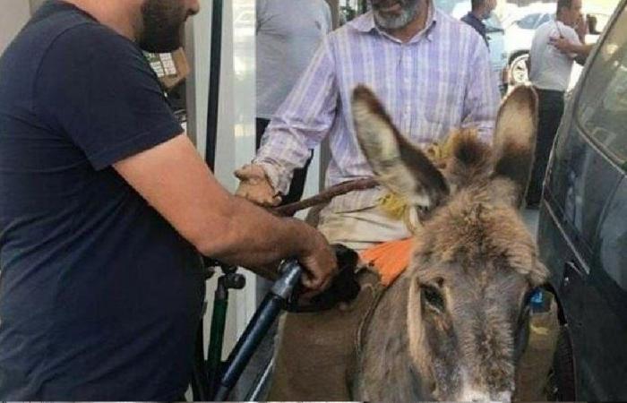 """""""المشوار"""" إلى محطة البنزين في لبنان على الحمار! (فيديو)"""