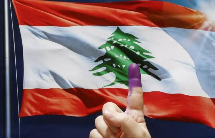 الانتخابات المقبلة: تقزيم الإغتراب بمقاعد صورية