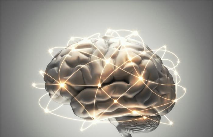 لتقوية الذاكرة.. دراسة بريطانية تعطي الأمل لكبار السن