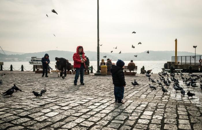 """عبر """"إنستغرام"""".. المهاجرون الأفغان يثيرون الجدل في تركيا"""