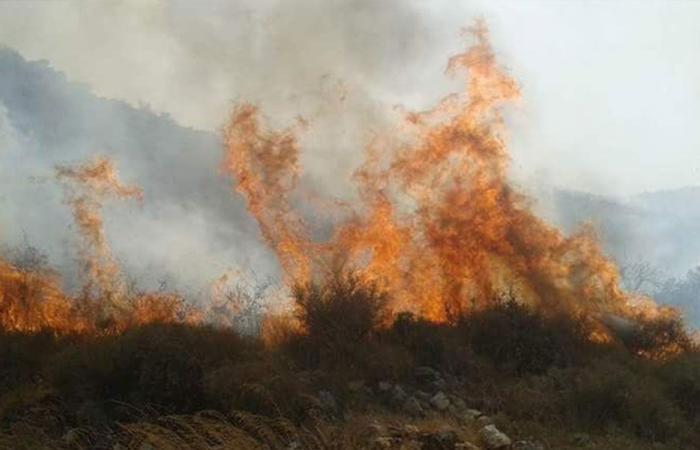 الحرائق تتجدّد… وصرخات استغاثة (فيديو)
